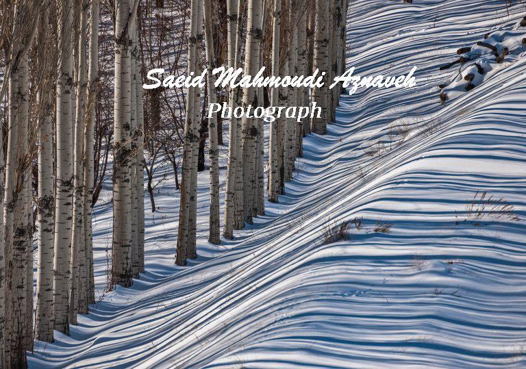 winter - Fajr visual arts 2010